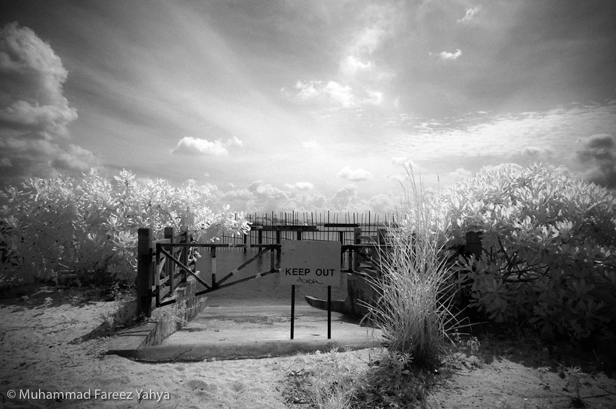 Random Infrared Photos